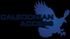 cal-access-800-vector-flat